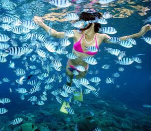 Vallarta Snorkeling